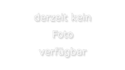 Viofo A119S Lieferumfang